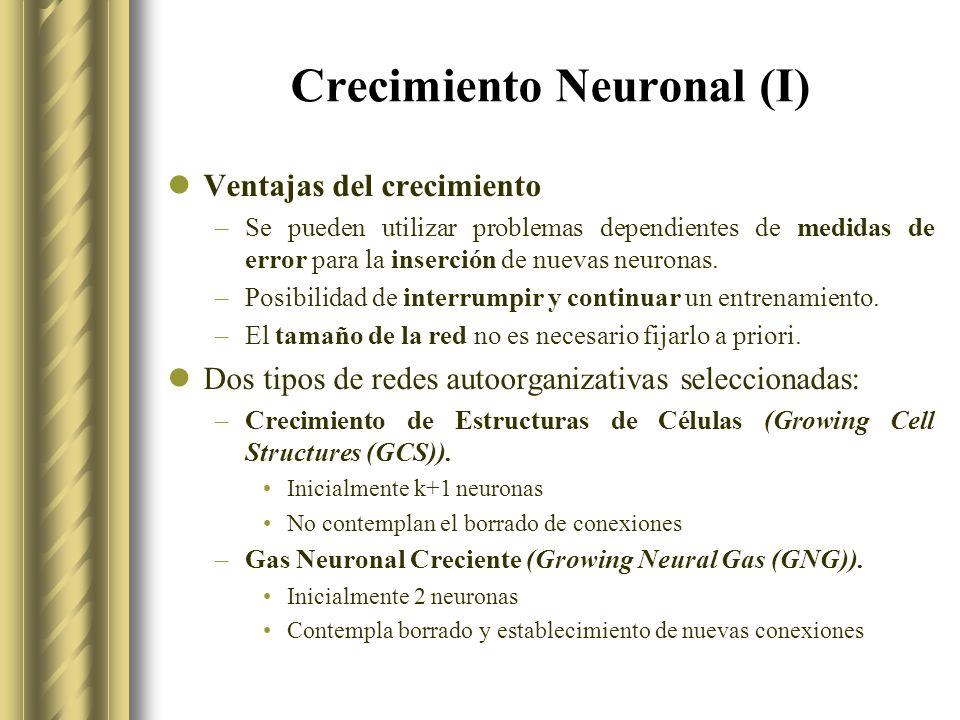 Crecimiento Neuronal (I)