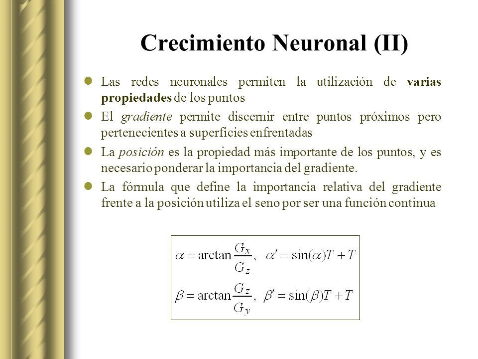 Crecimiento Neuronal (II)