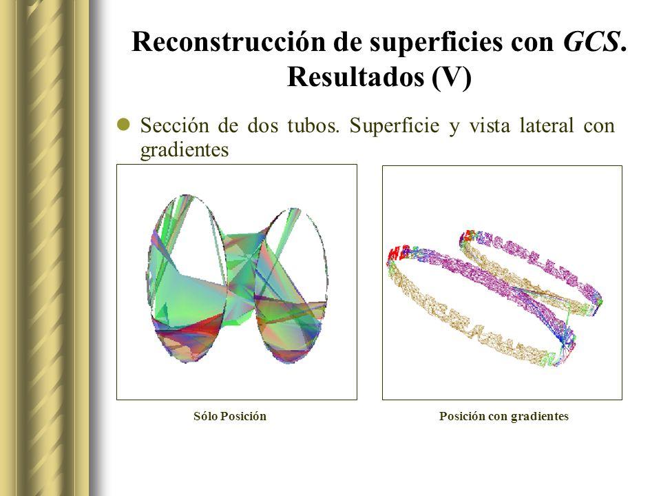 Reconstrucción de superficies con GCS. Resultados (V)