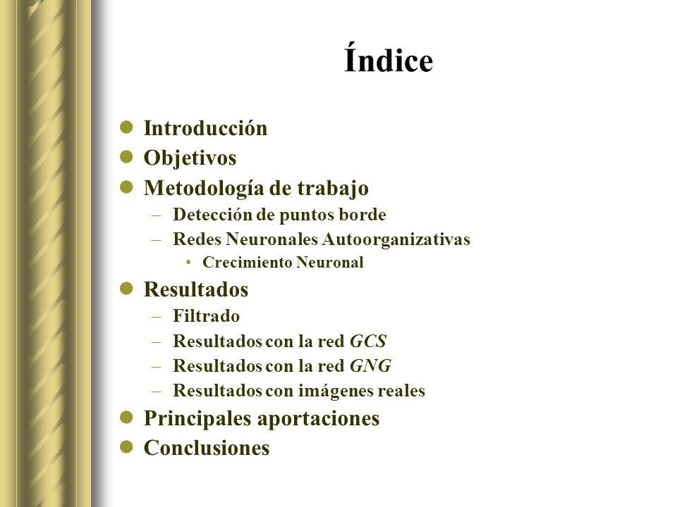 Índice Introducción Objetivos Metodología de trabajo Resultados