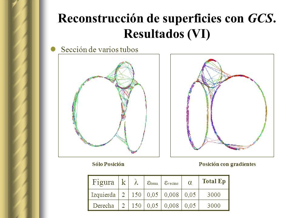 Reconstrucción de superficies con GCS. Resultados (VI)