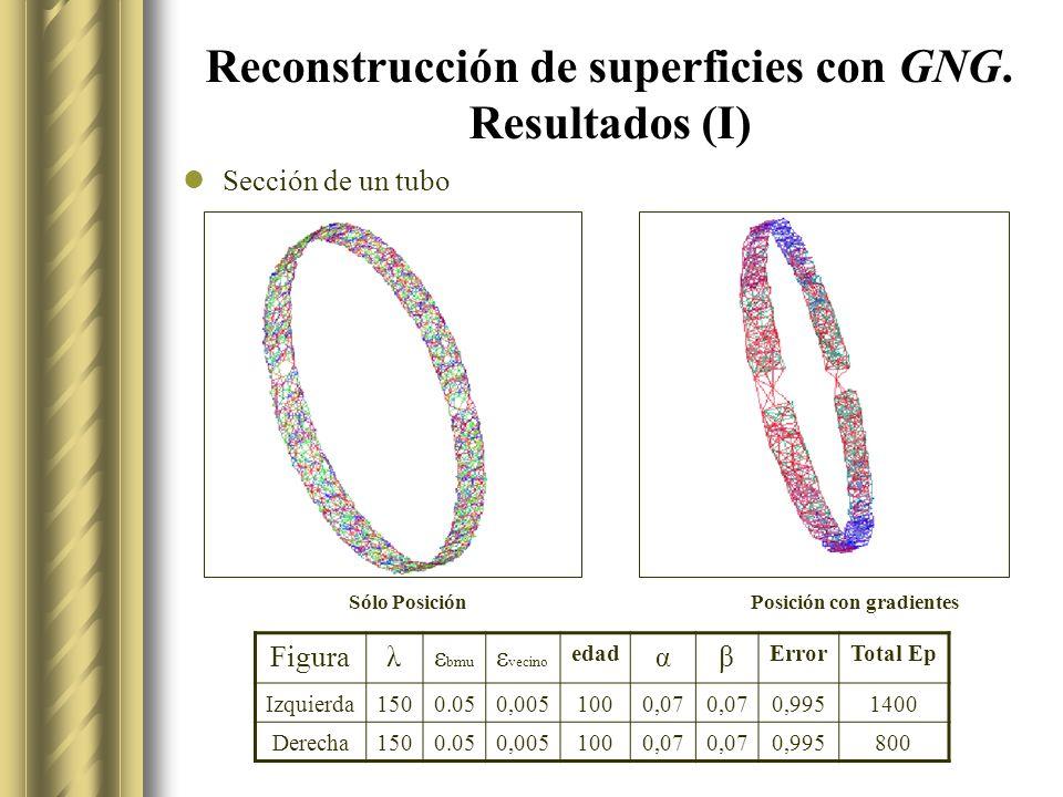 Reconstrucción de superficies con GNG. Resultados (I)