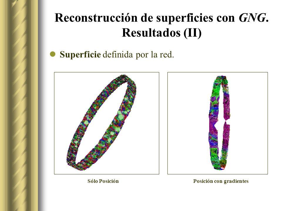 Reconstrucción de superficies con GNG. Resultados (II)