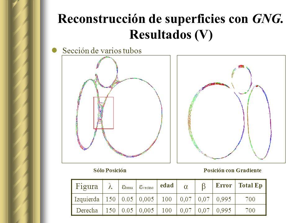 Reconstrucción de superficies con GNG. Resultados (V)
