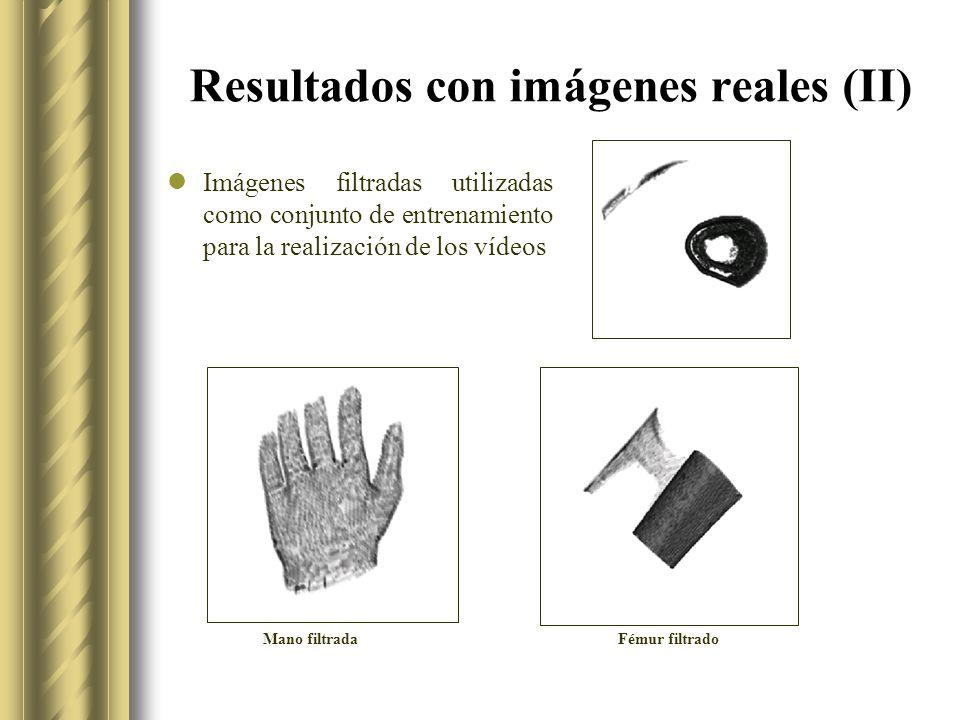 Resultados con imágenes reales (II)