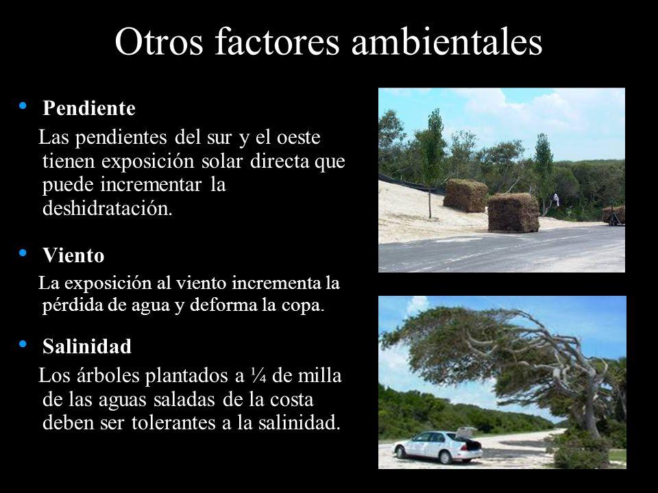 Otros factores ambientales