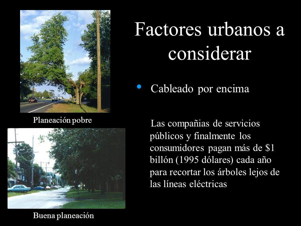 Factores urbanos a considerar