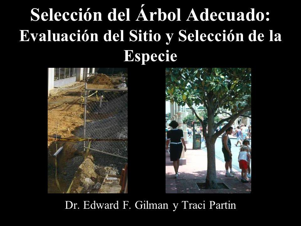 Dr. Edward F. Gilman y Traci Partin