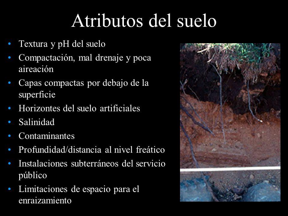 Atributos del suelo Textura y pH del suelo