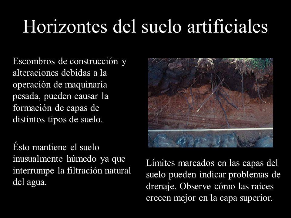 Horizontes del suelo artificiales
