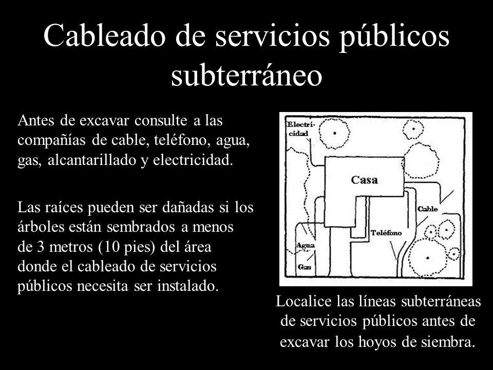 Cableado de servicios públicos subterráneo