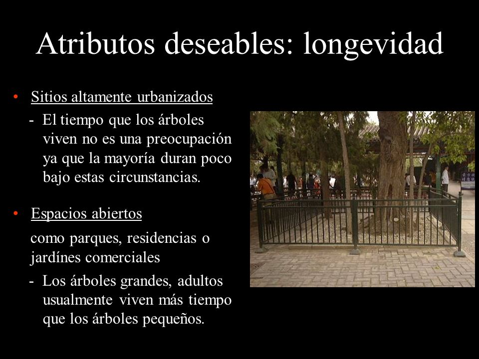 Atributos deseables: longevidad