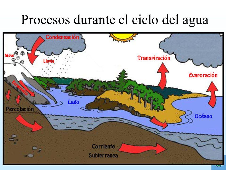 Procesos durante el ciclo del agua