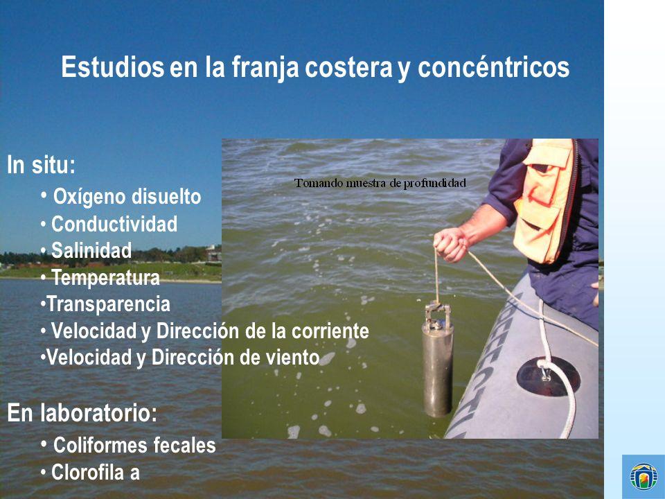 Estudios en la franja costera y concéntricos