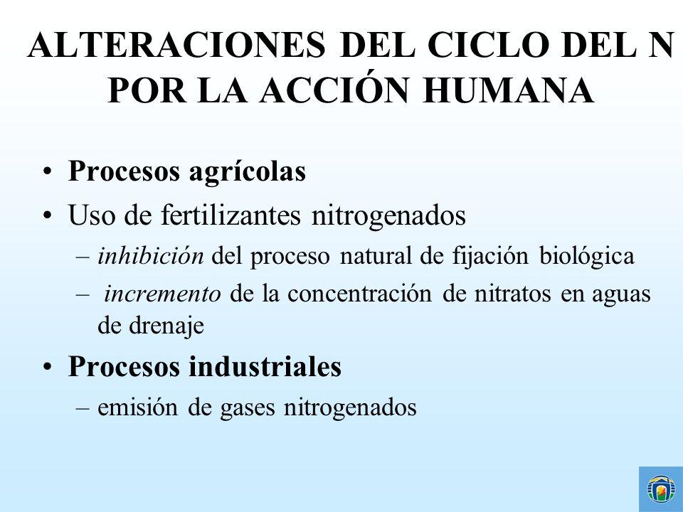 ALTERACIONES DEL CICLO DEL N POR LA ACCIÓN HUMANA