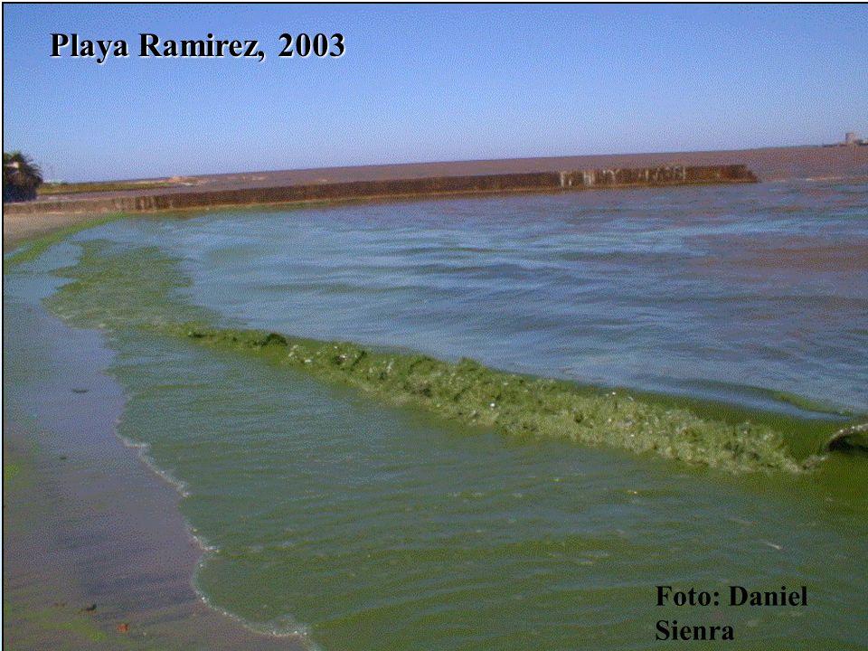 Playa Ramirez, 2003 Foto: Daniel Sienra