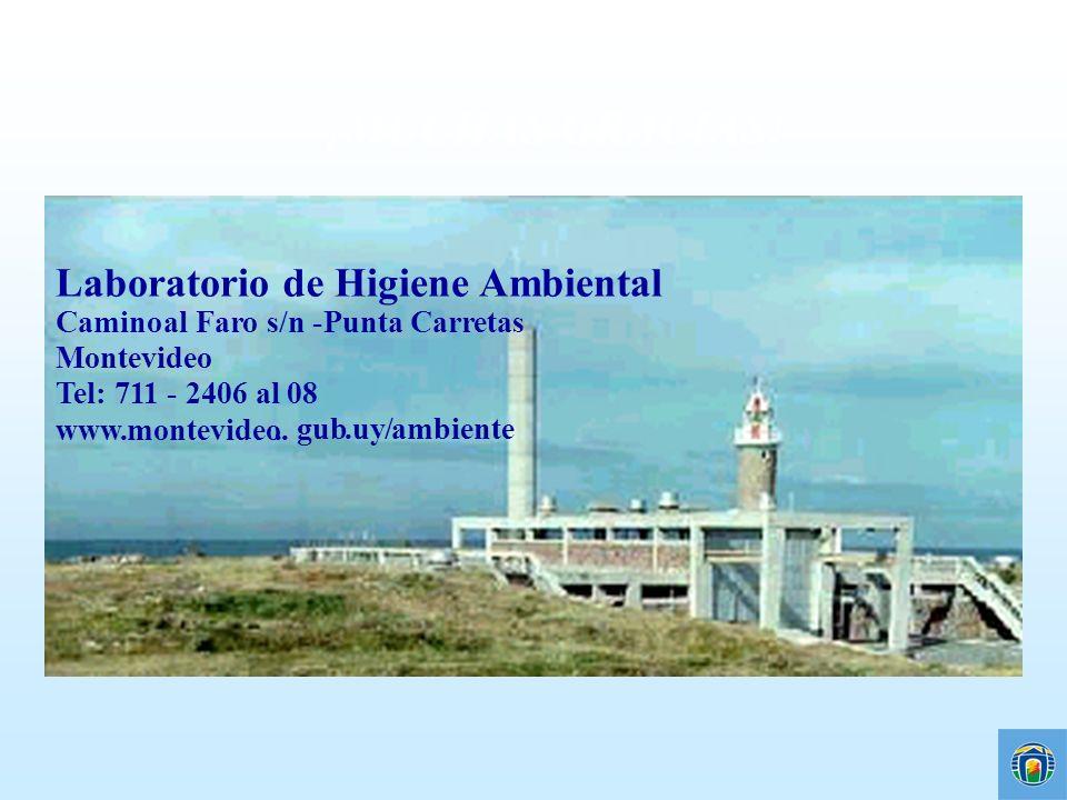 ¡MUCHAS GRACIAS! Laboratorio de Higiene Ambiental Camino al Faro s/n -