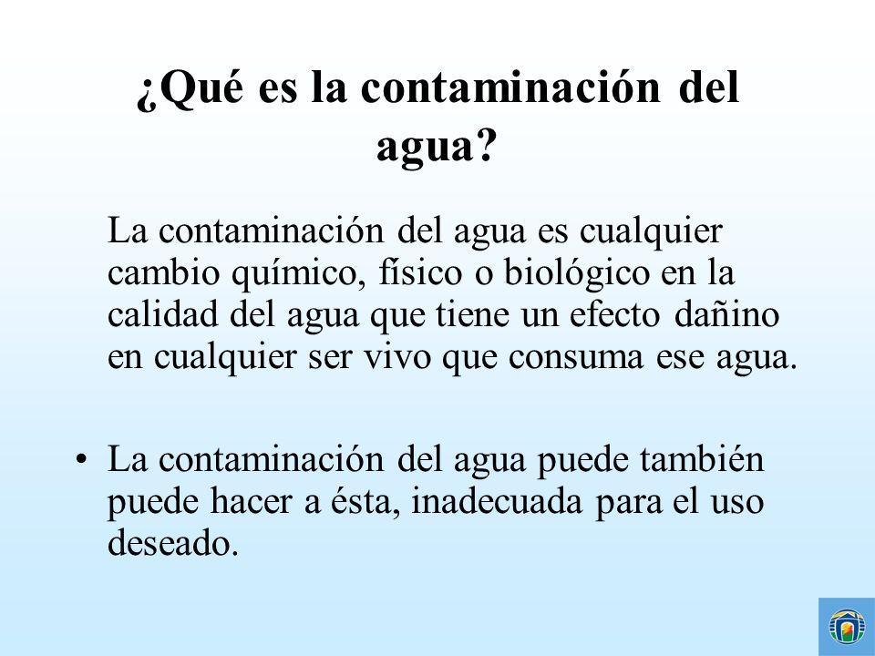 ¿Qué es la contaminación del agua