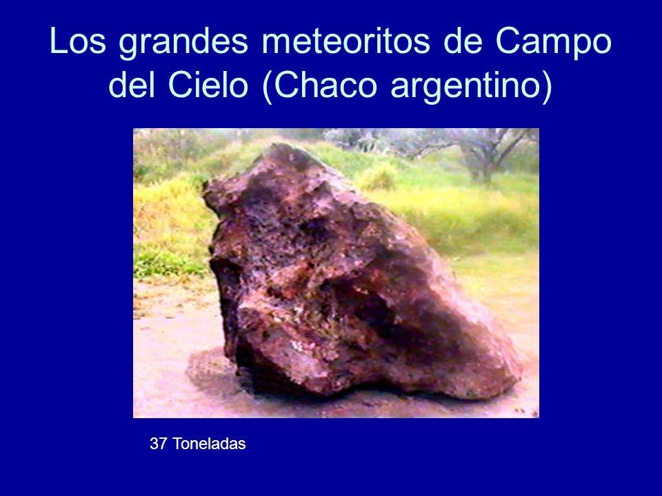 Los grandes meteoritos de Campo del Cielo (Chaco argentino)