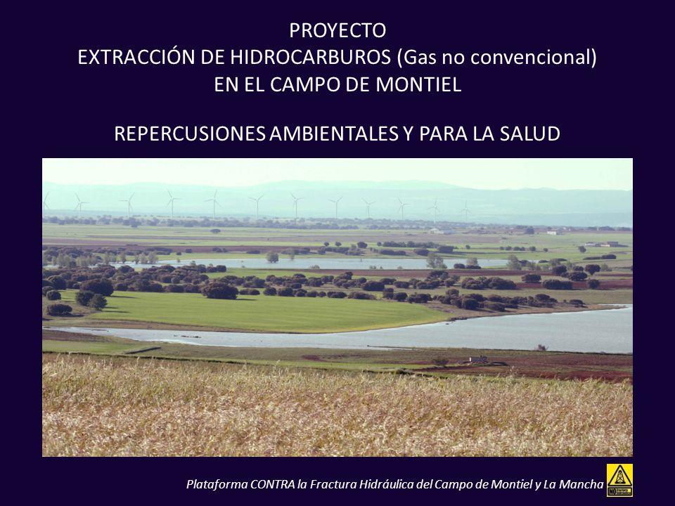 PROYECTO EXTRACCIÓN DE HIDROCARBUROS (Gas no convencional) EN EL CAMPO DE MONTIEL REPERCUSIONES AMBIENTALES Y PARA LA SALUD