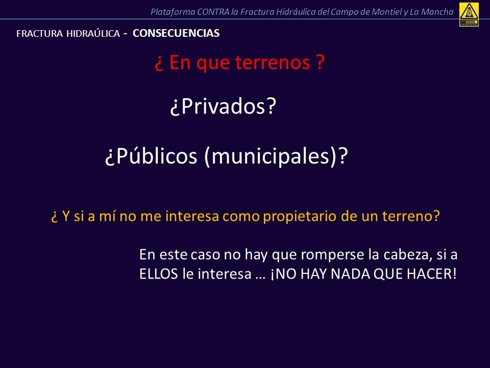 ¿Públicos (municipales)