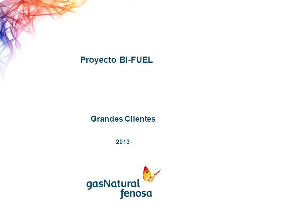 Proyecto BI-FUEL Grandes Clientes 2013