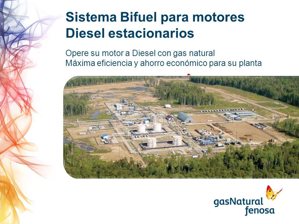 Sistema Bifuel para motores Diesel estacionarios