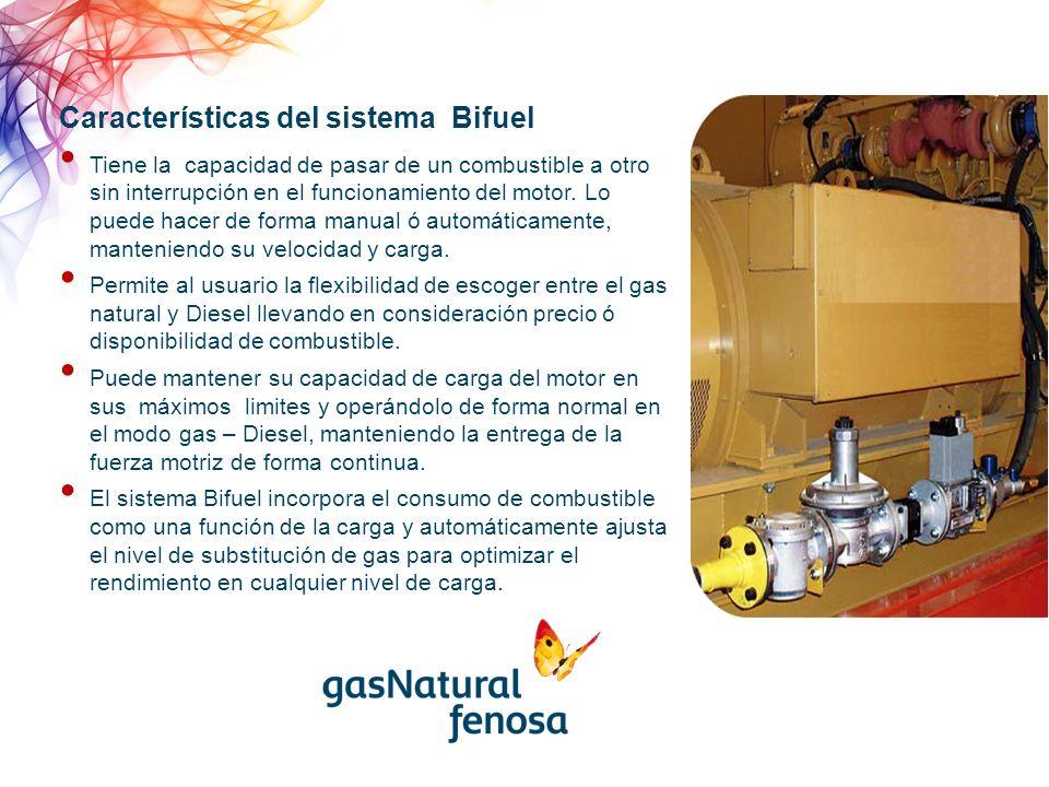 Características del sistema Bifuel