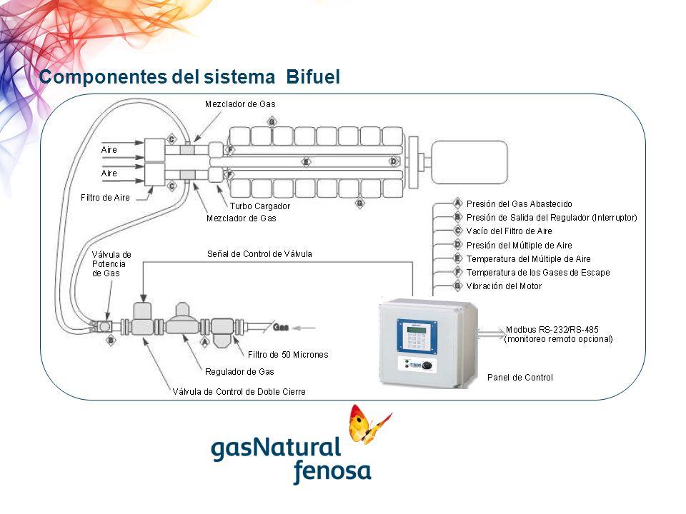 Componentes del sistema Bifuel
