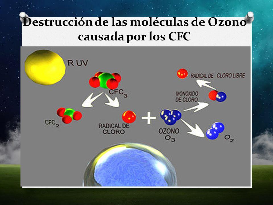 Destrucción de las moléculas de Ozono causada por los CFC