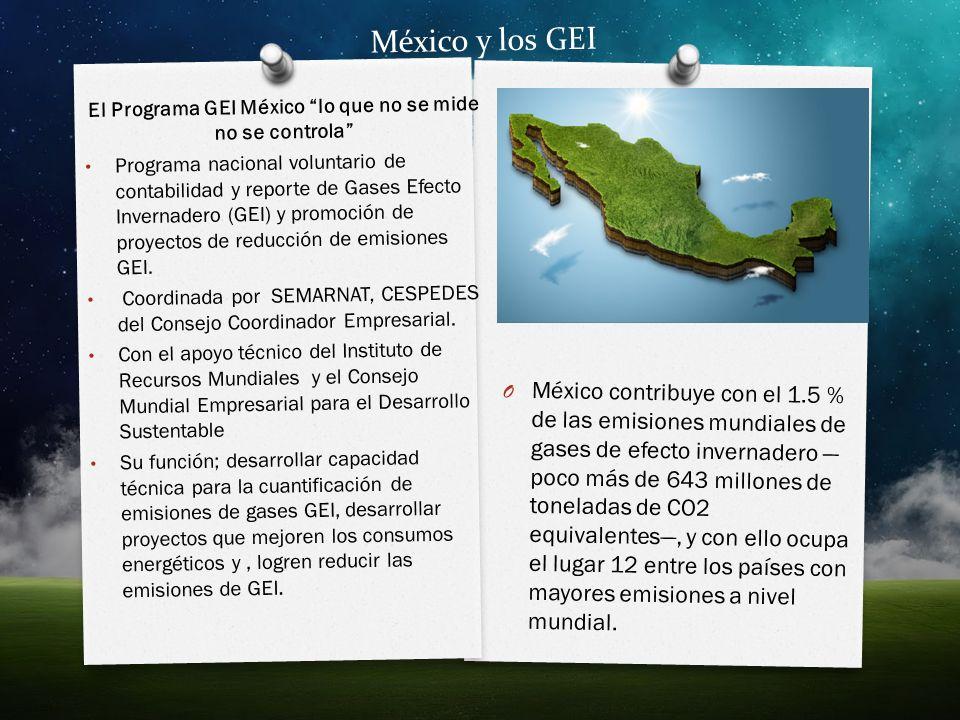 El Programa GEI México lo que no se mide no se controla