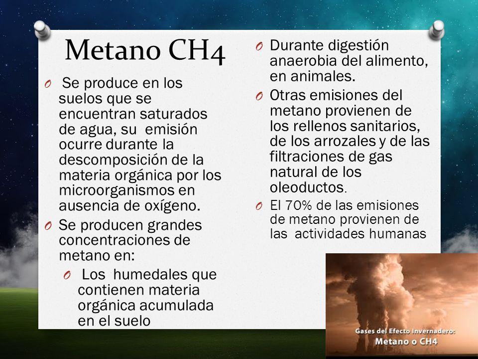Metano CH4 Durante digestión anaerobia del alimento, en animales.