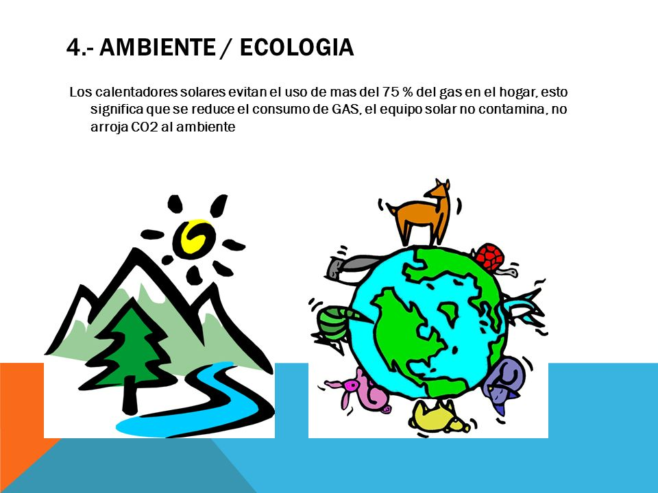 4.- AMBIENTE / ECOLOGIA