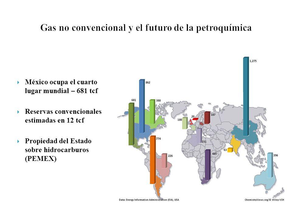 Gas no convencional y el futuro de la petroquímica
