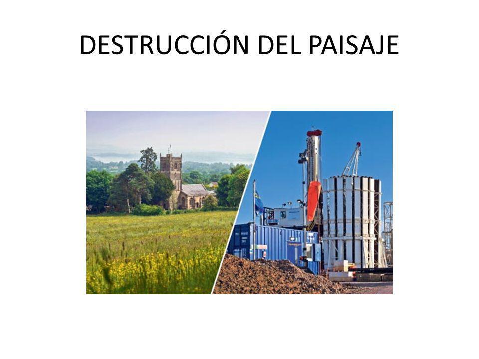 DESTRUCCIÓN DEL PAISAJE
