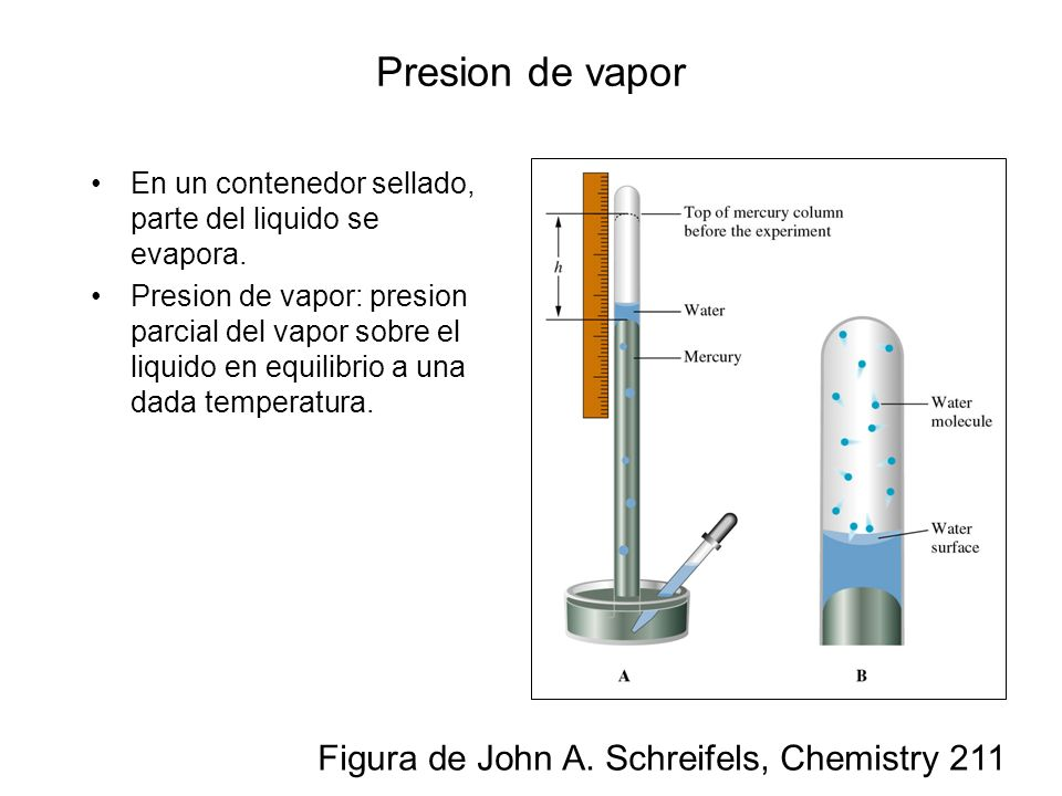 Presion de vapor Figura de John A. Schreifels, Chemistry 211