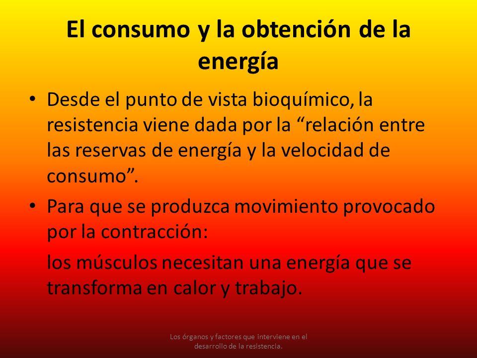 El consumo y la obtención de la energía