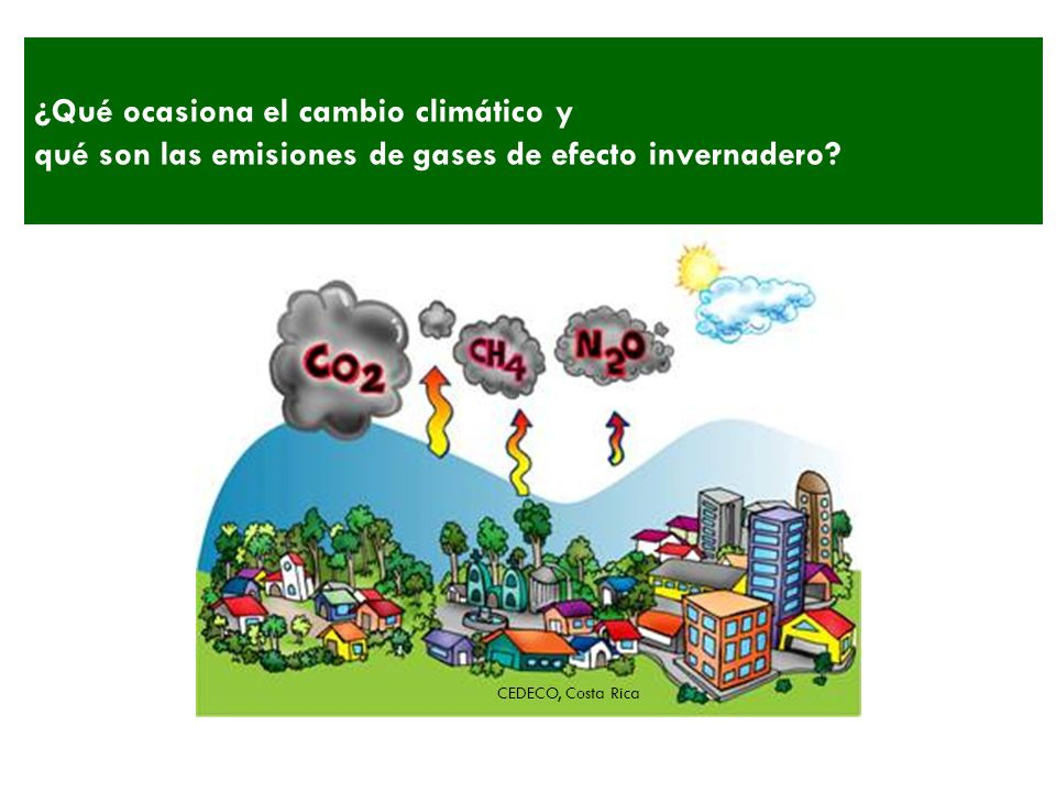 ¿Qué ocasiona el cambio climático y