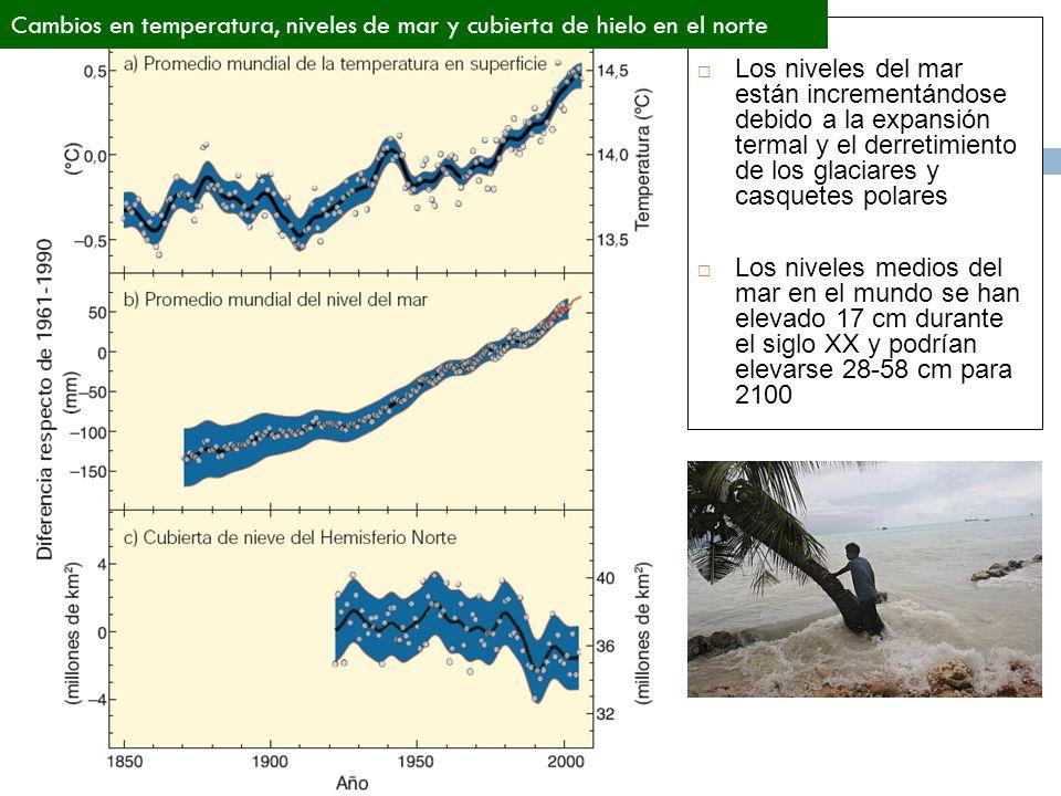 Cambios en temperatura, niveles de mar y cubierta de hielo en el norte