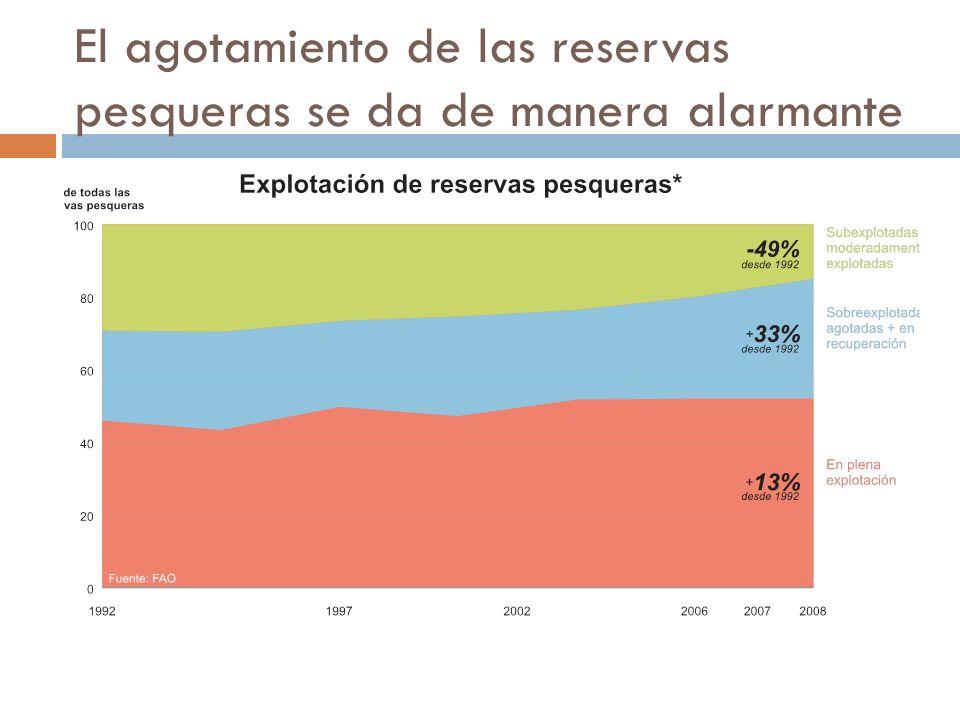 El agotamiento de las reservas pesqueras se da de manera alarmante