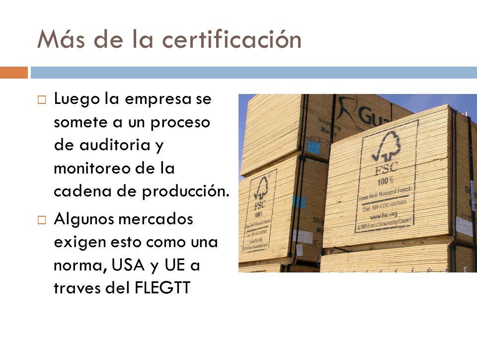Más de la certificación