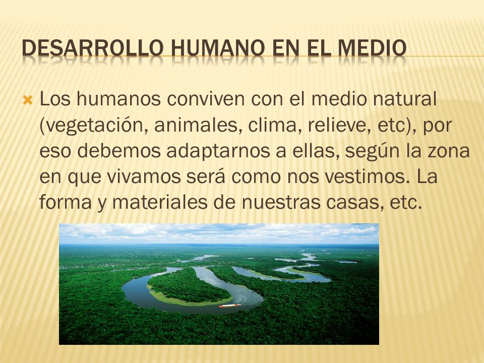 Desarrollo humano en el medio