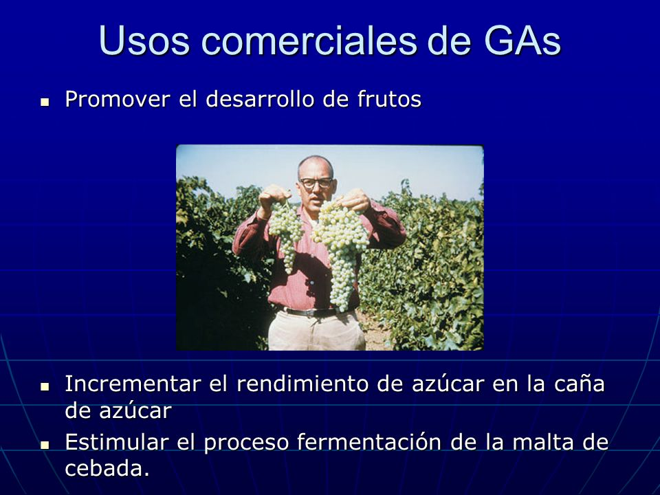 Usos comerciales de GAs