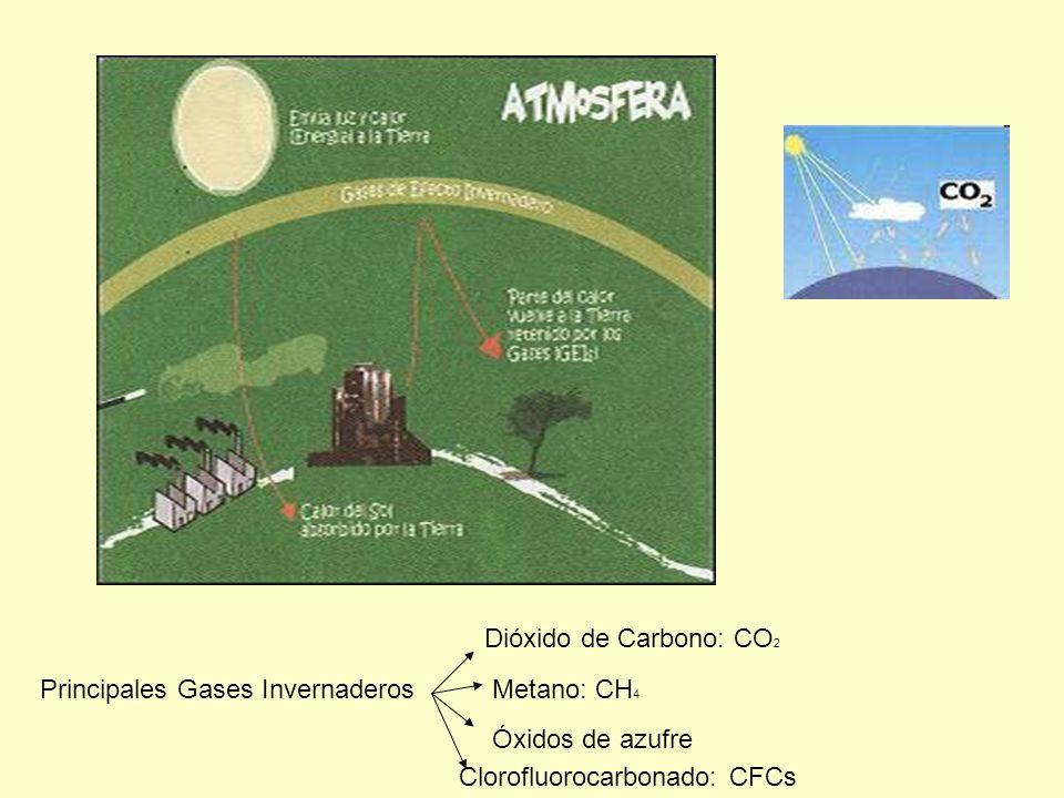 Dióxido de Carbono: CO2 Principales Gases Invernaderos.