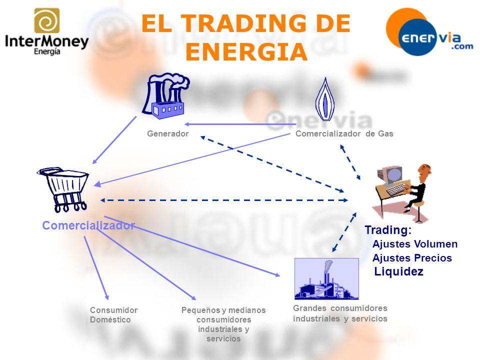 Pequeños y medianos consumidores industriales y servicios