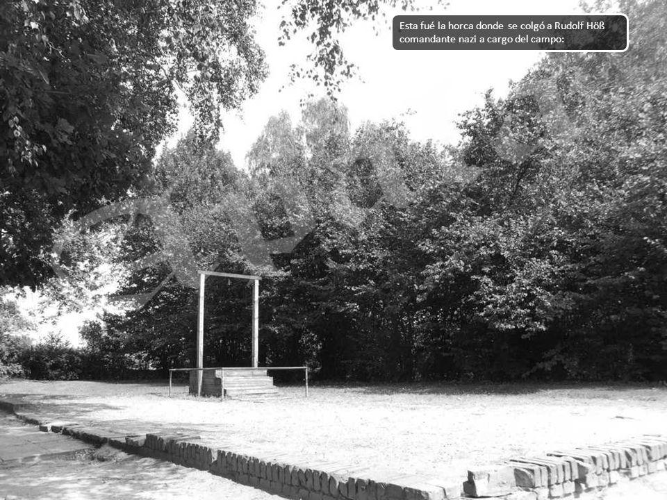 Esta fué la horca donde se colgó a Rudolf Höß comandante nazi a cargo del campo:
