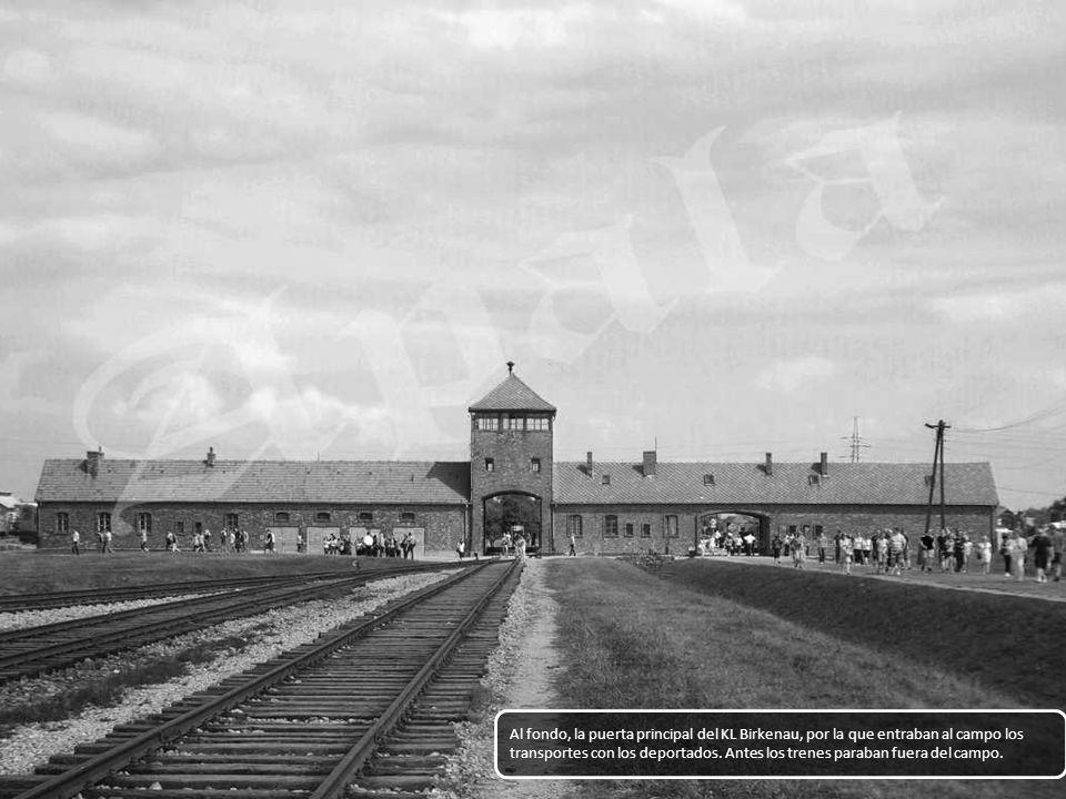 Al fondo, la puerta principal del KL Birkenau, por la que entraban al campo los transportes con los deportados.