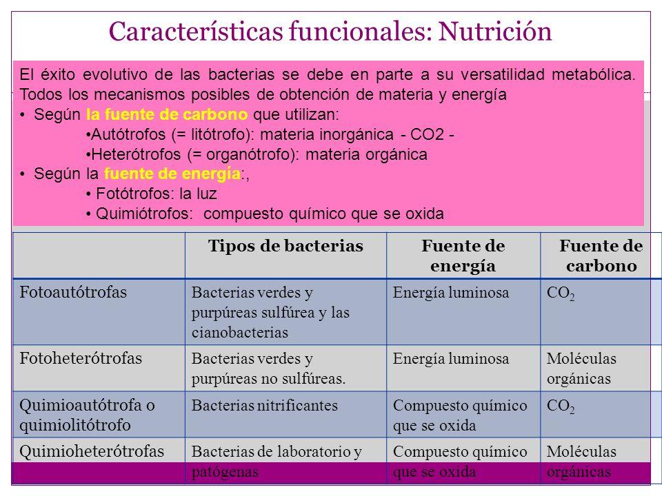 Características funcionales: Nutrición