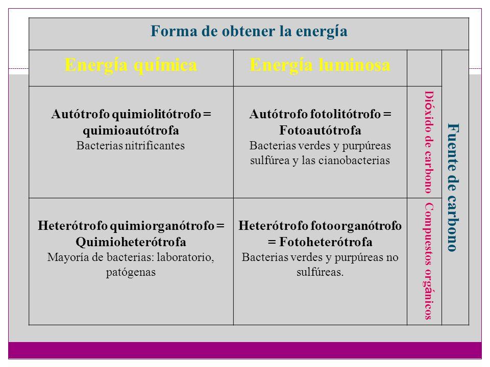 Forma de obtener la energía