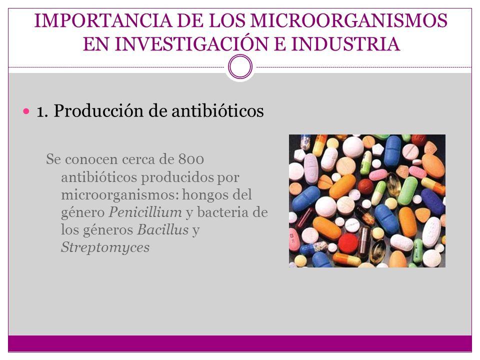 IMPORTANCIA DE LOS MICROORGANISMOS EN INVESTIGACIÓN E INDUSTRIA